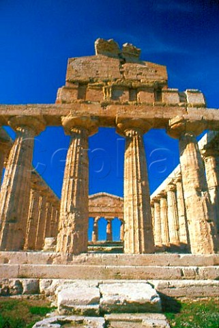 Greek Temple of Athena at Paestum   Campania Italy